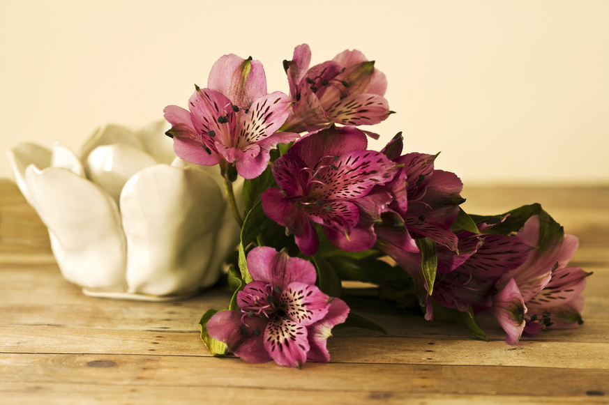 Photograph of Peruvian Lilies on a table.